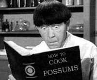 How To Cook Possums